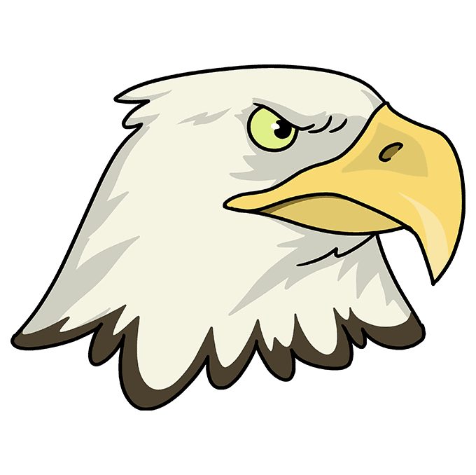 How to Draw Eagle Head: Step 10