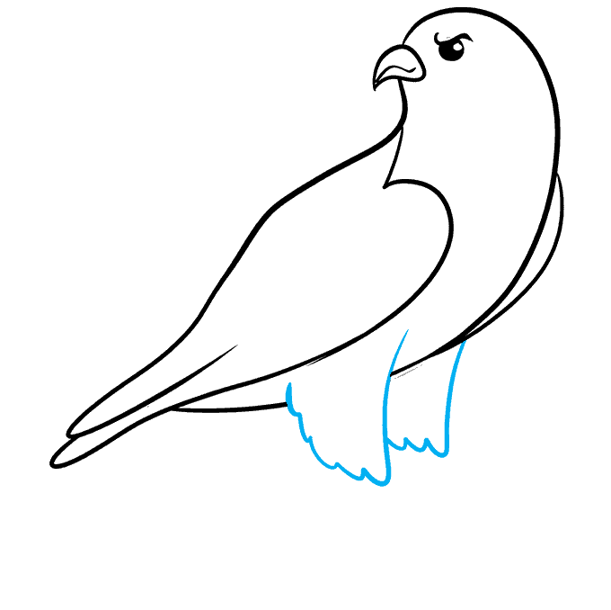 How to Draw Falcon: Step 5