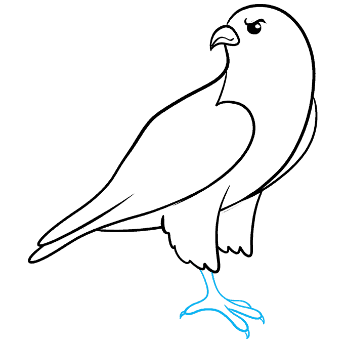 How to Draw Falcon: Step 6