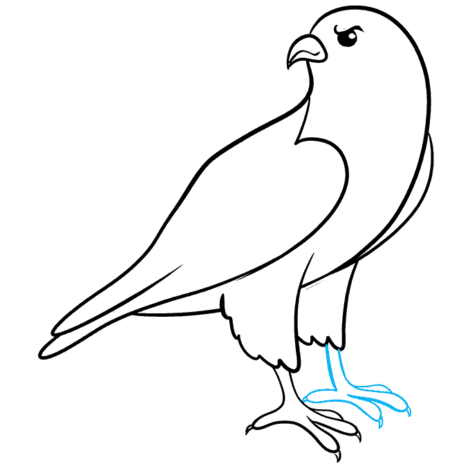 How to Draw Falcon: Step 7