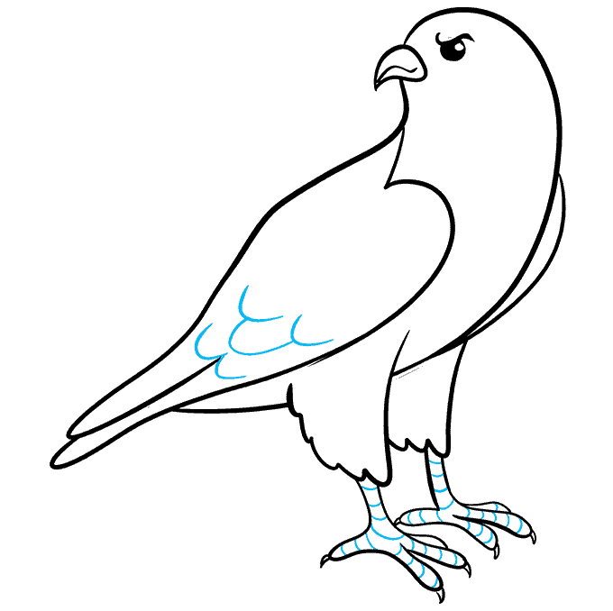 How to Draw Falcon: Step 8