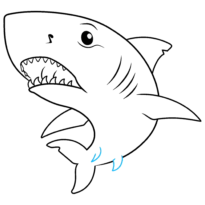 How to Draw Great White Shark: Step 9