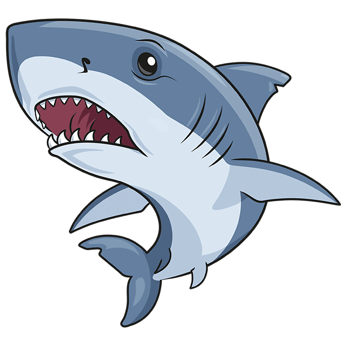How to Draw Great White Shark: Step 10