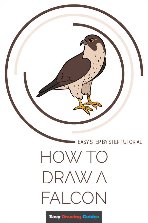 How to Draw Falcon | Share to Pinterest
