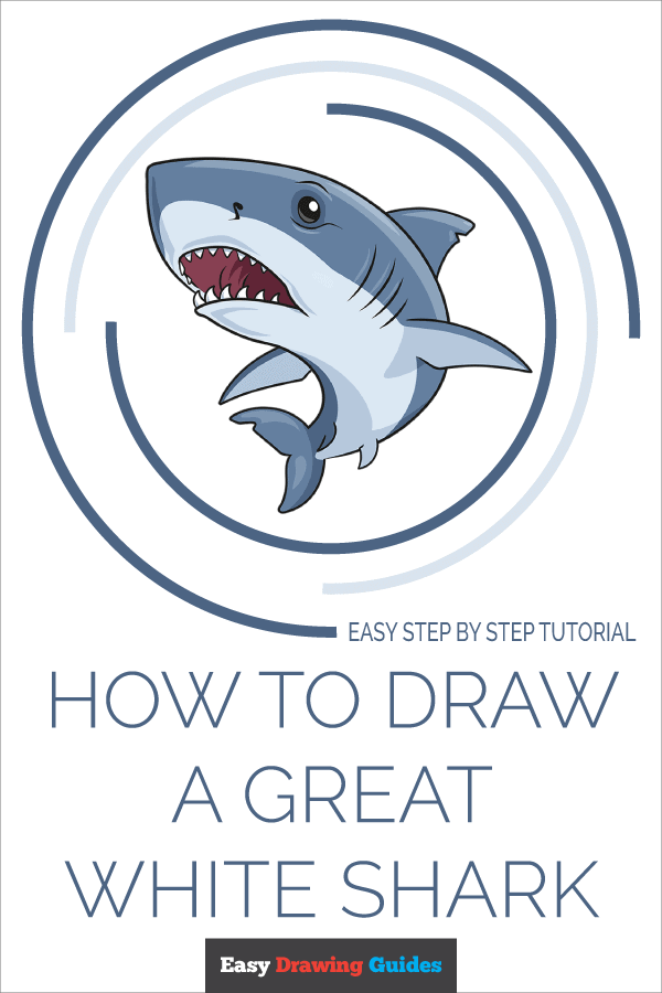 How to Draw Great White Shark | Share to Pinterest