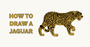 How to Draw a Jaguar Featured Image