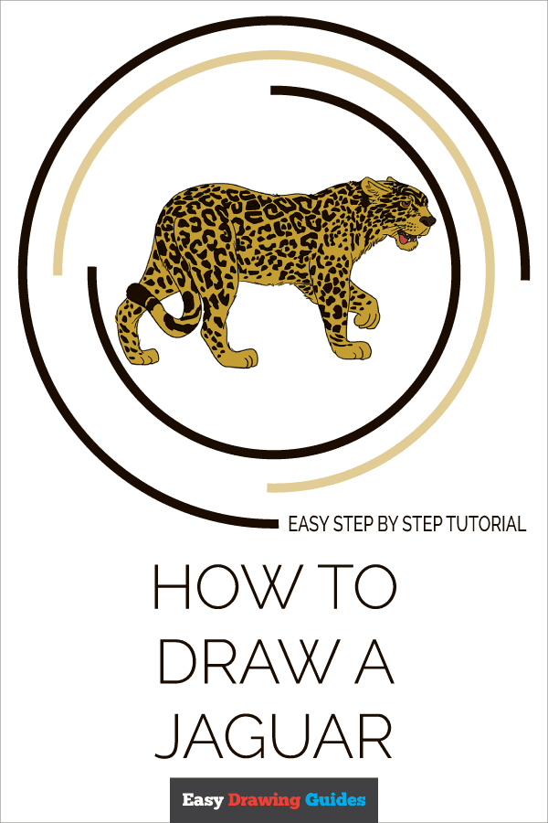 How to Draw Jaguar | Share to Pinterest