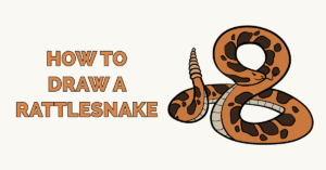 How to Draw a Rattlesnake Featured Image