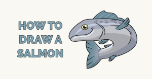 How to Draw a Salmon Featured Image