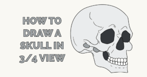 How to Draw a Skull in 3/4 View Featured Image