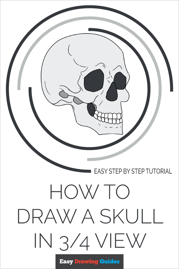 How to Draw Skull in 3/4 View | Share to Pinterest