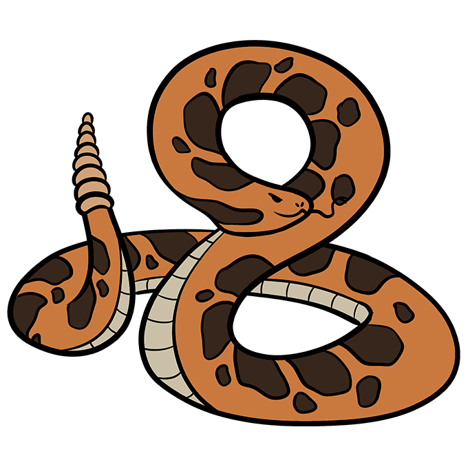 How to Draw Rattlesnake: Step 10