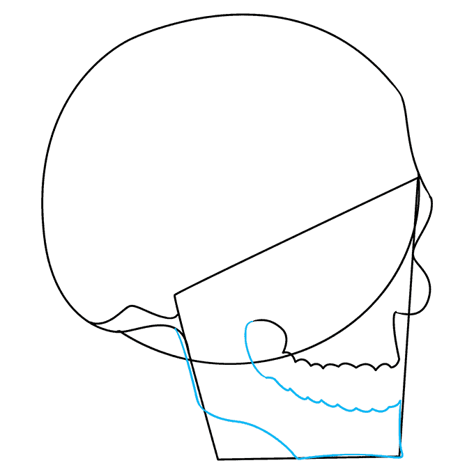 How to Draw Skull in 3/4 View: Step 4