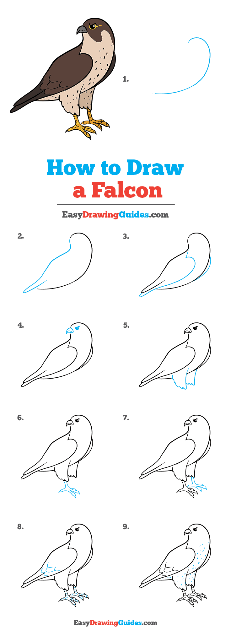 How to Draw Falcon
