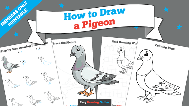 Printables thumbnail: How to draw a Pigeon