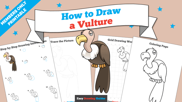 download a printable PDF of Vulture drawing tutorial