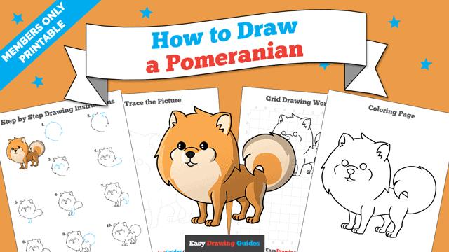download a printable PDF of Pomeranian drawing tutorial