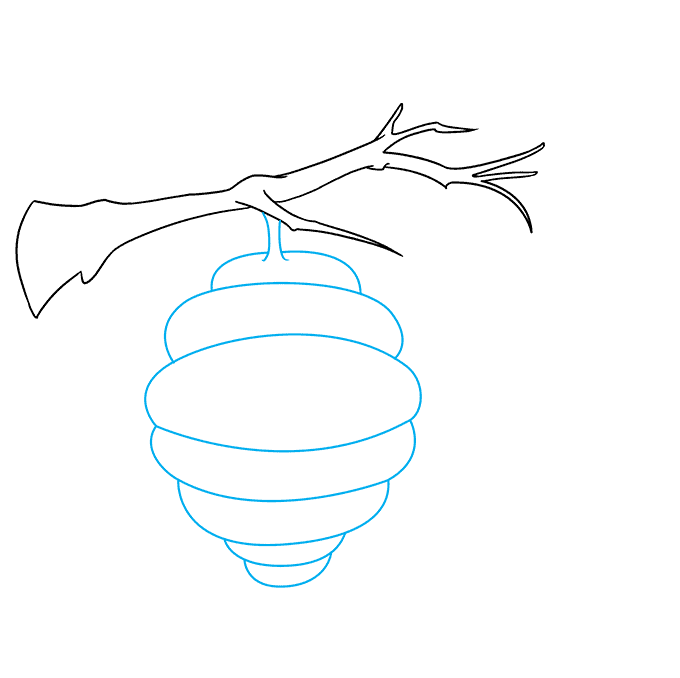 How to Draw a Bee Hive Step 02