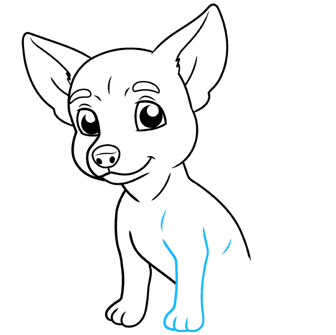 How to Draw Chihuahua: Step 7