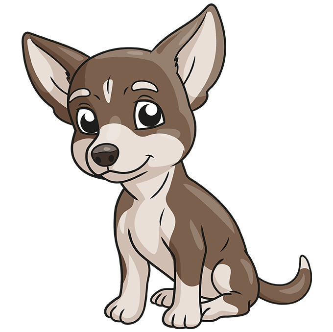 How to Draw Chihuahua: Step 10