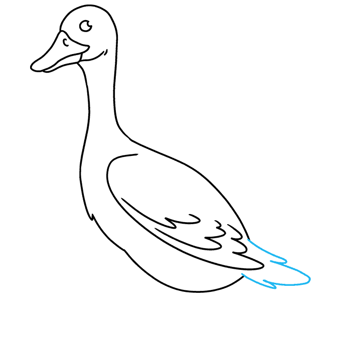 How to Draw Goose: Step 7
