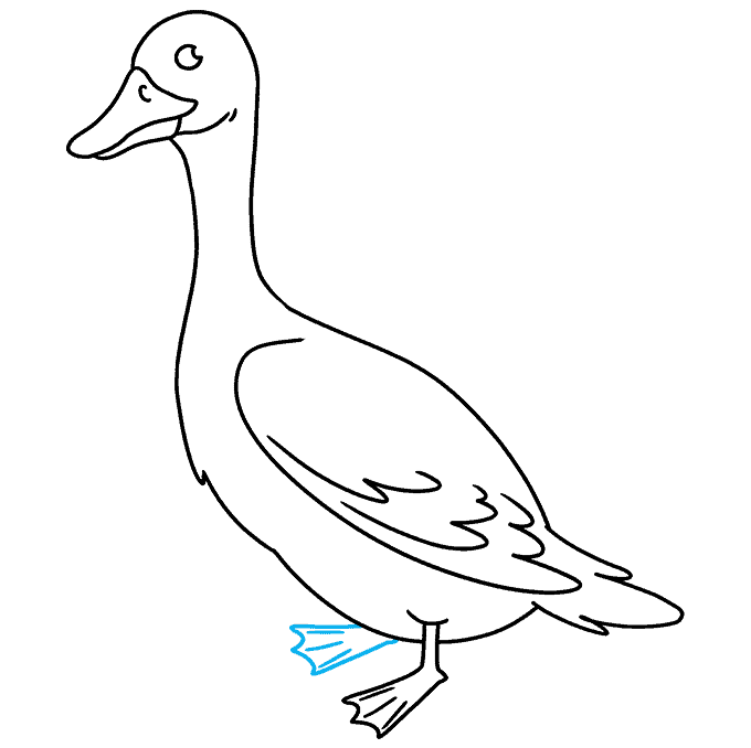 How to Draw Goose: Step 9