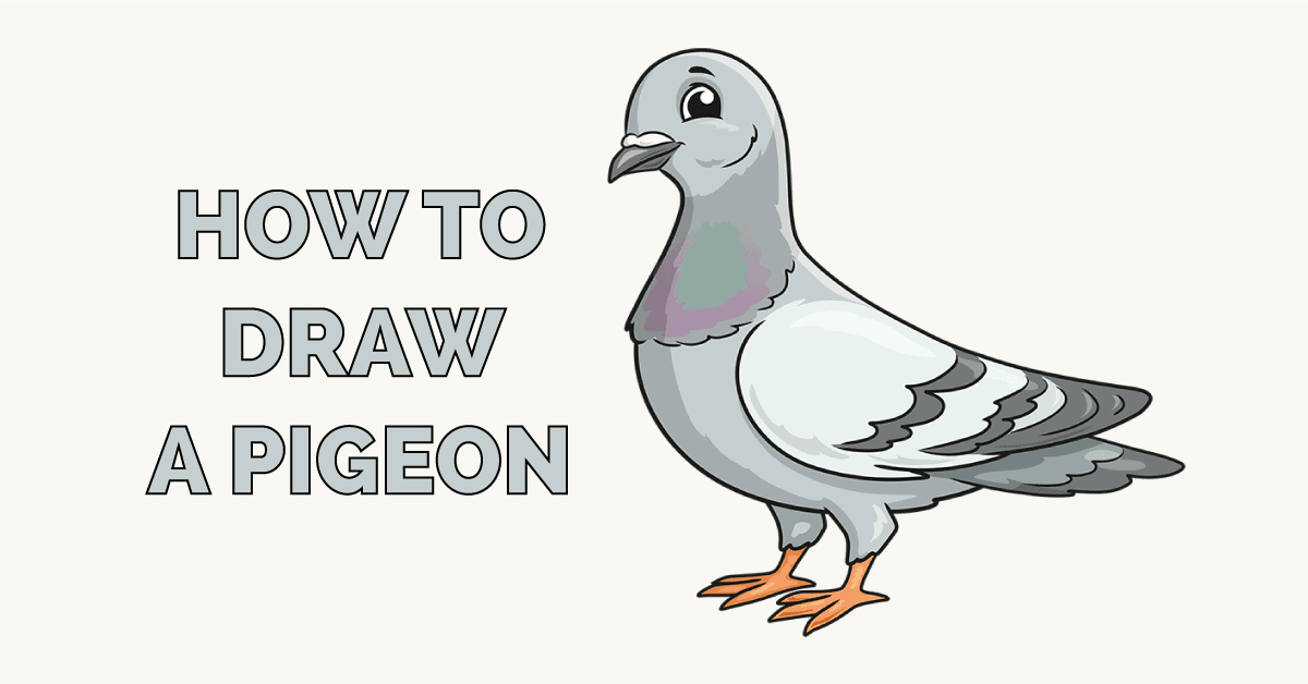 How to Draw a Pigeon Featured Image