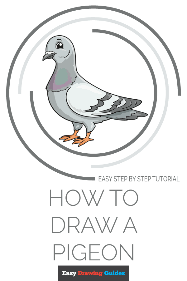 How to Draw a Pigeon Pinterest Image