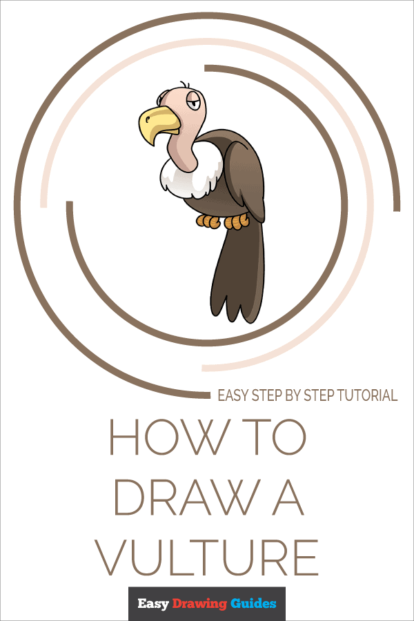 How to Draw Vulture | Share to Pinterest