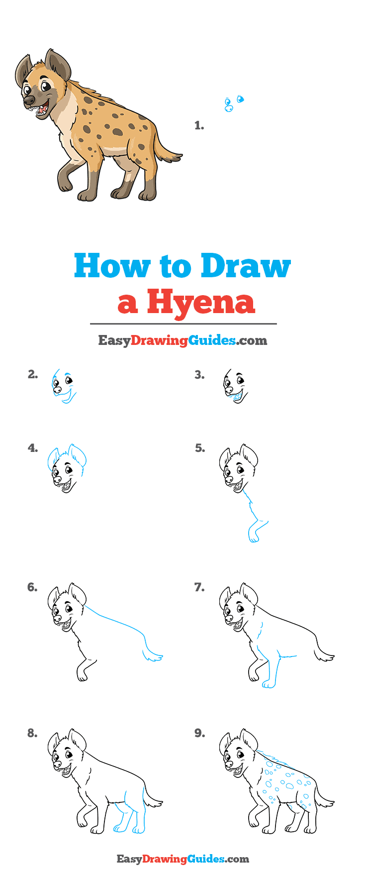 How to draw a Hyena - all drawing steps in one image