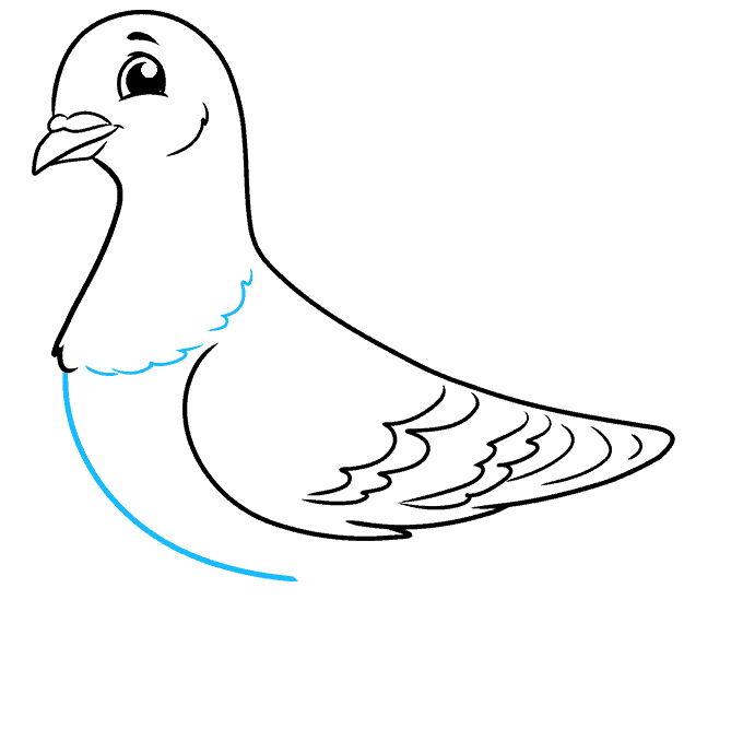 How to Draw a Pigeon Step 06