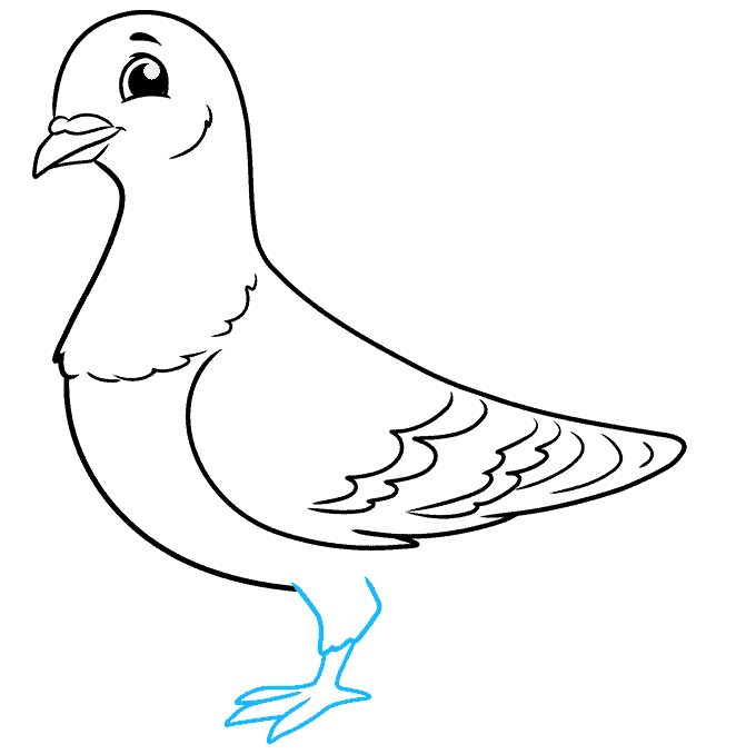 How to Draw a Pigeon Step 07