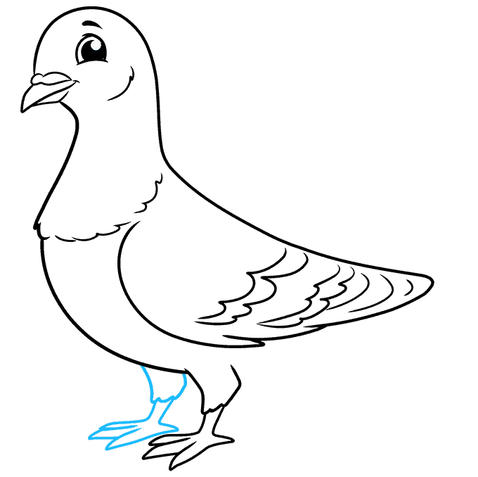 How to Draw a Pigeon Step 08