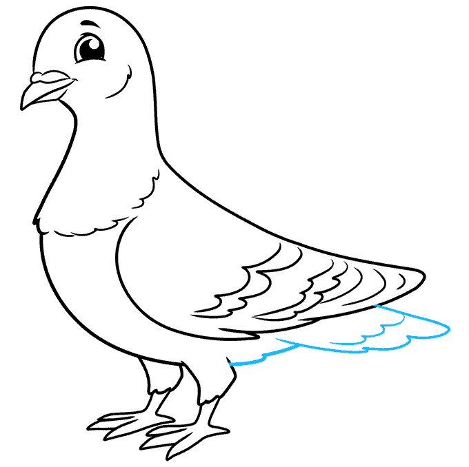 How to Draw a Pigeon Step 09