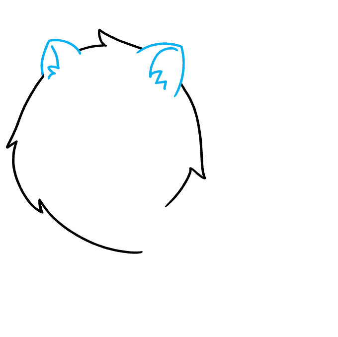 How to Draw a Pomeranian Step 02