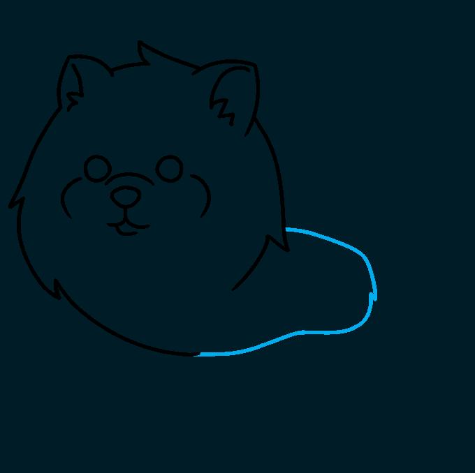 How to Draw a Pomeranian Step 04