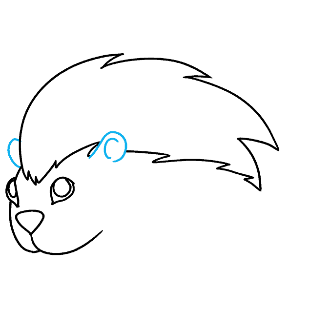 How to Draw Porcupine: Step 5