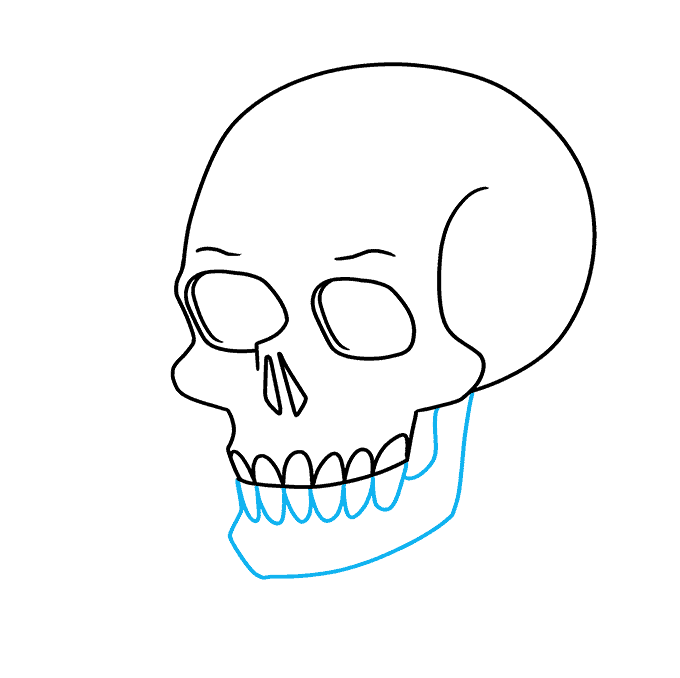 How to Draw a Skull and Rose Step 05