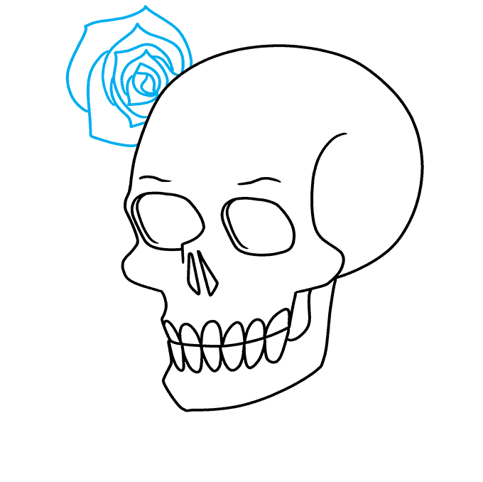 How to Draw a Skull and Rose Step 06