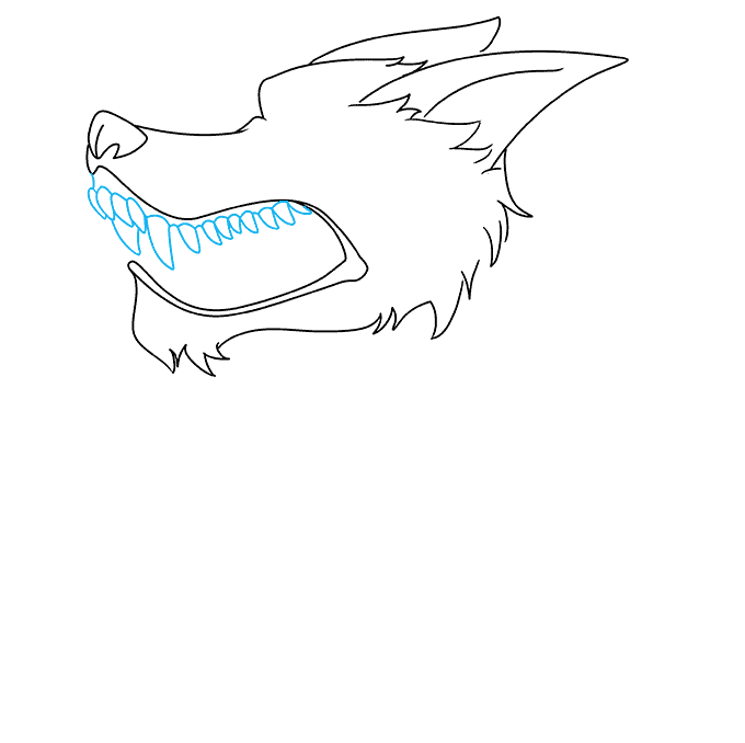 How to Draw a Snarling Wolf Step 05
