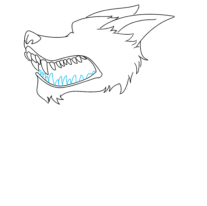 How to Draw a Snarling Wolf Step 06