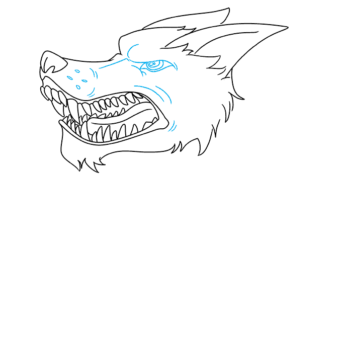 How to Draw Snarling Wolf: Step 8