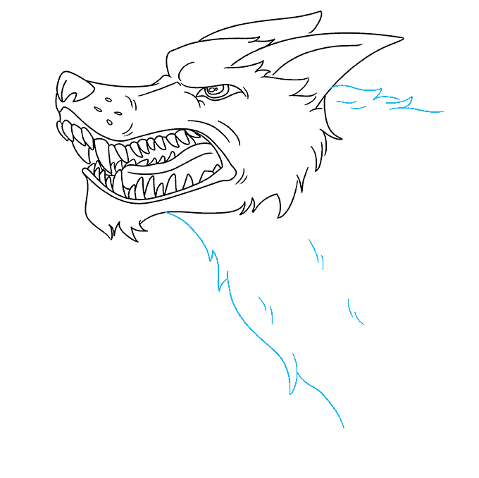 How to Draw a Snarling Wolf Step 09
