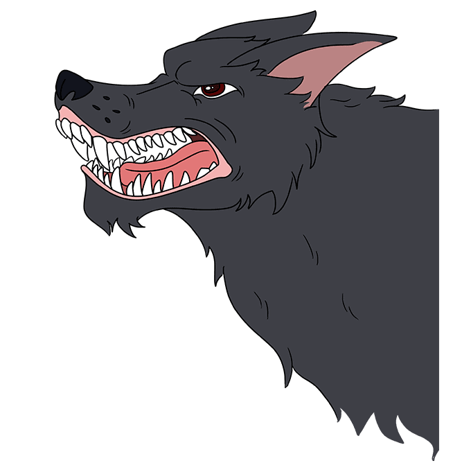 How to Draw Snarling Wolf: Step 10