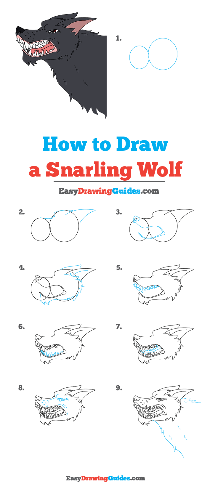 How to Draw a Snarling Wolf Step by Step Tutorial Image
