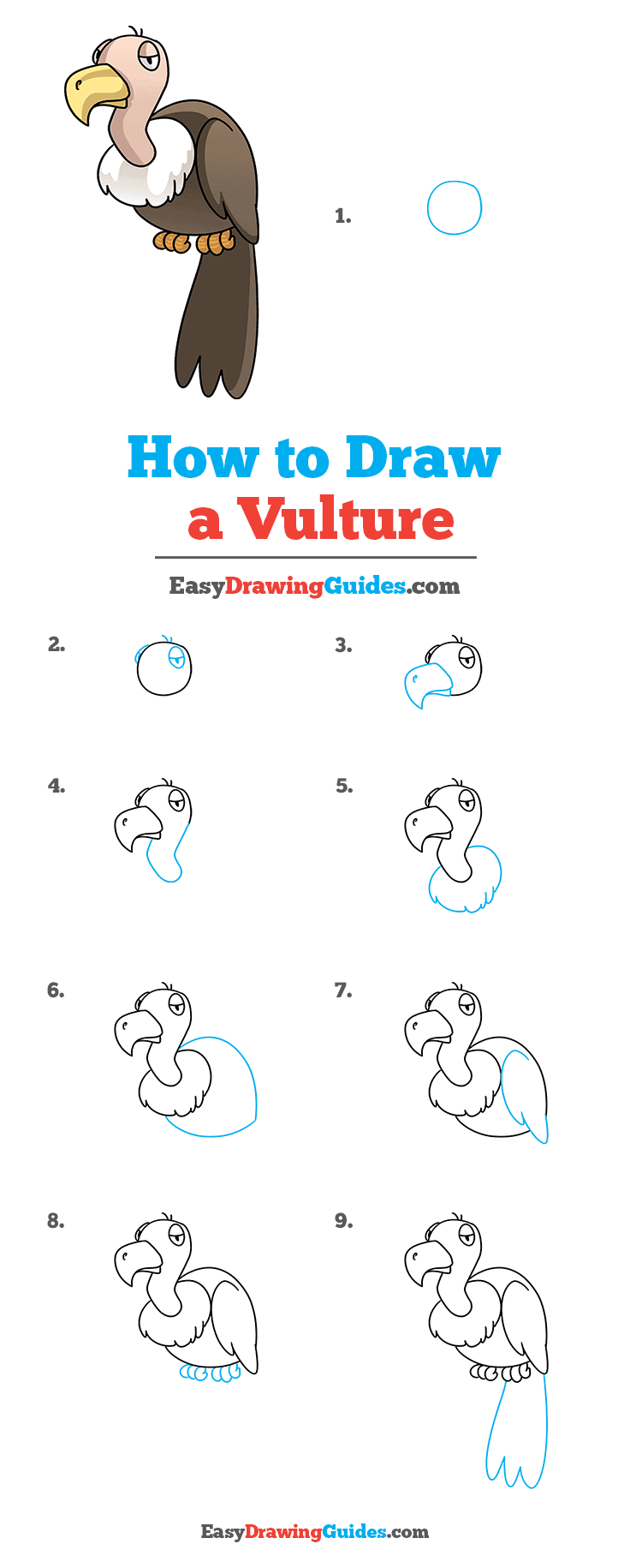 How to Draw Vulture
