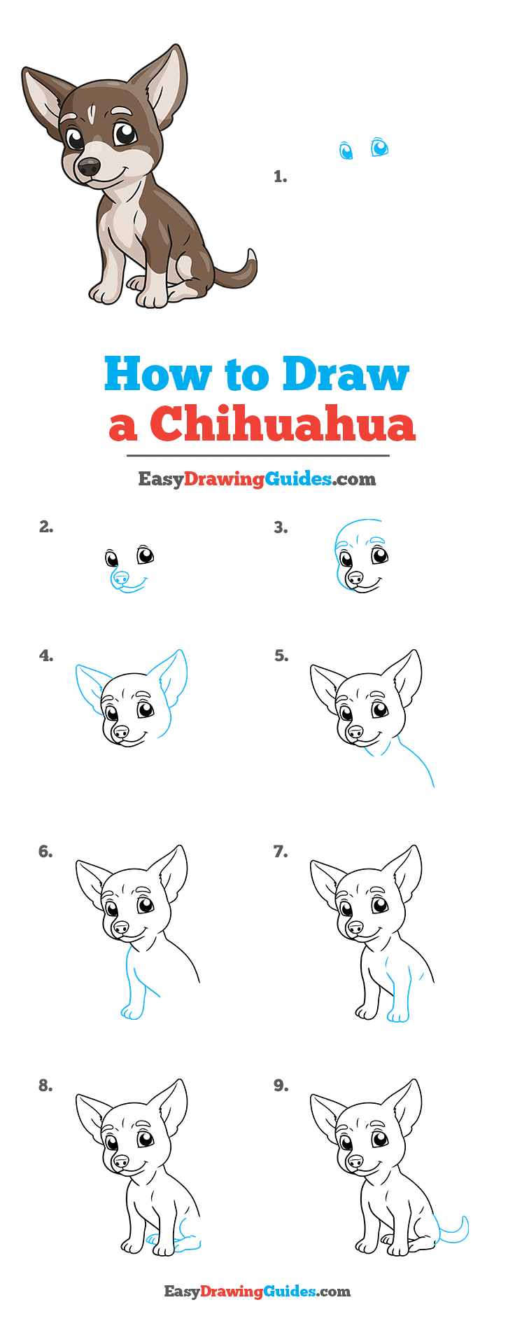 How to Draw Chihuahua