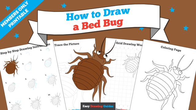 download a printable PDF of Bed Bug drawing tutorial