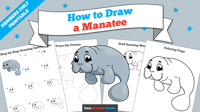 download a printable PDF of Manatee drawing tutorial