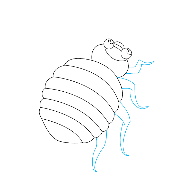 How to Draw Bed Bug: Step 6